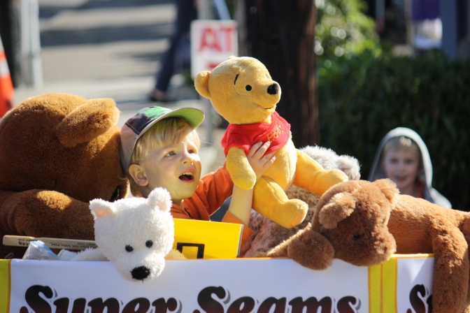 A Teddy Bear Parade!